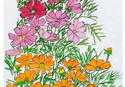 장애인 예술제 수상작품 사진입니다, 코스모스 꽃 그림이며 매우 화려한 그림입니다, 꽃 위에는 나비 세마리가 있습니다